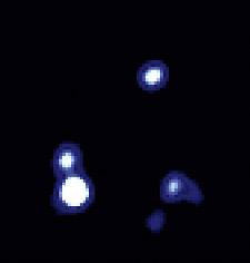 PG1115+80 x-ray
